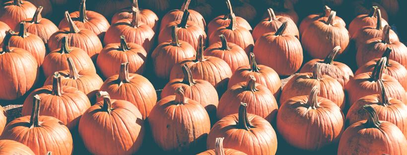 Idioms-halloween